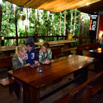 De bar in Daintree